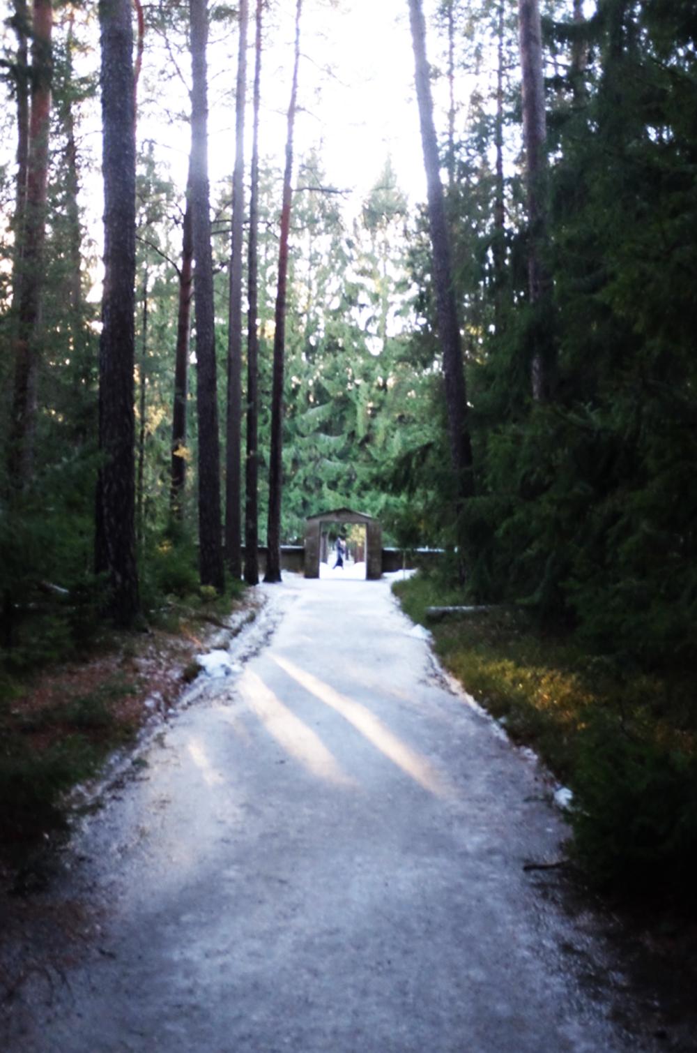 A path in Skogskyrkogården cemetery in Stockholm